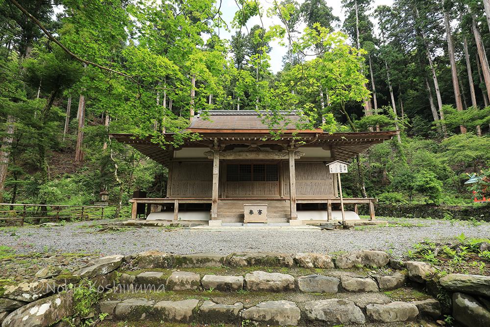 高山寺 世界遺産 金堂