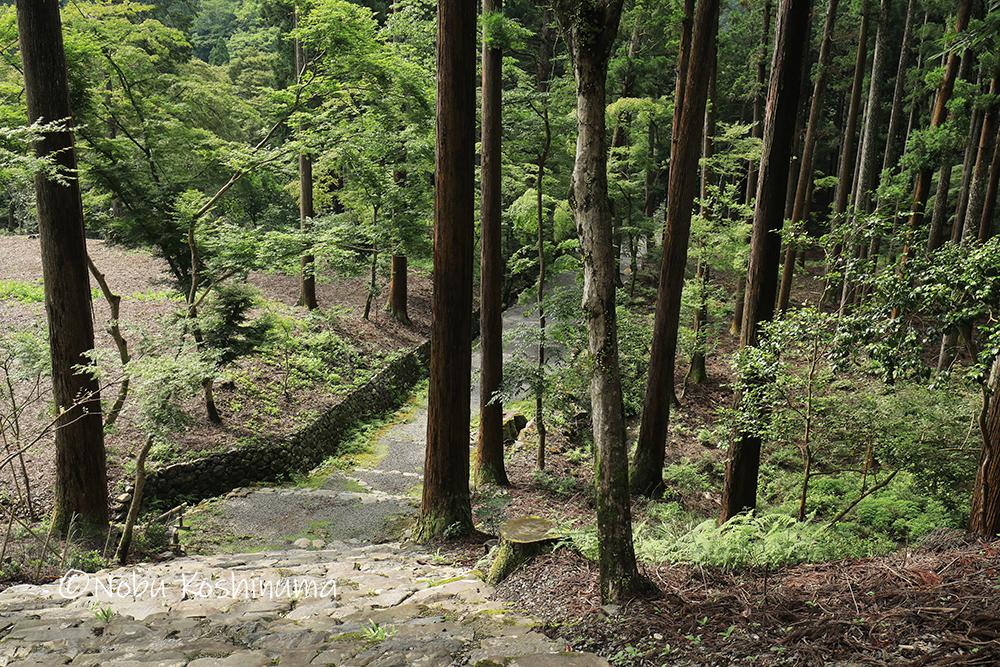 高山寺 世界遺産