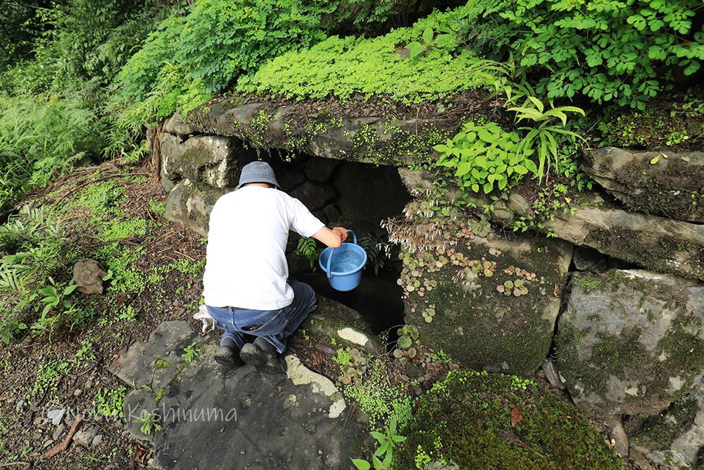 高山寺 世界遺産 湧き水