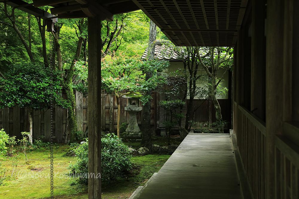 高山寺 世界遺産 石水院 国宝