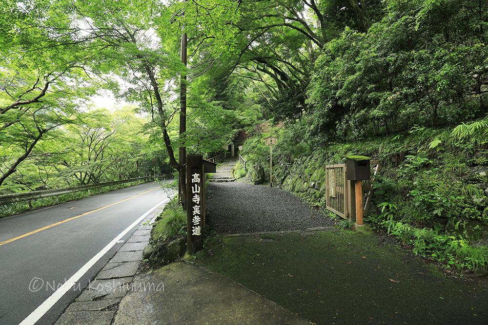 高山寺の表参道と裏山道