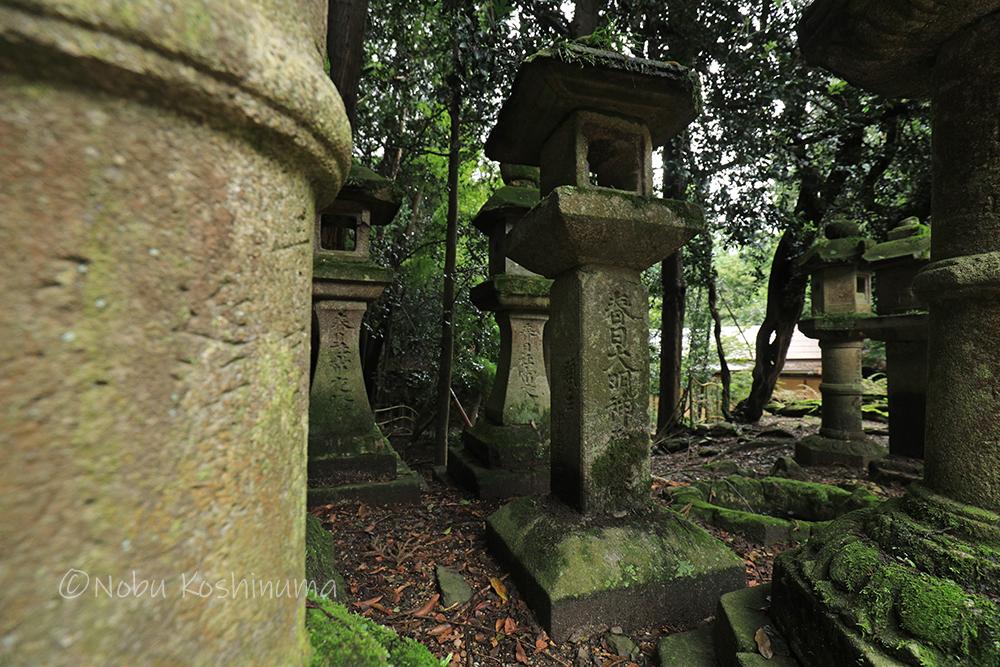 「春日大明神」と彫られたレアな石灯籠はどこにある?